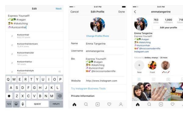 bio instagram kini bisa ditambahkan hashtag dan link profil