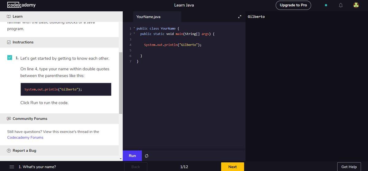 Code Academy's interactive user interface
