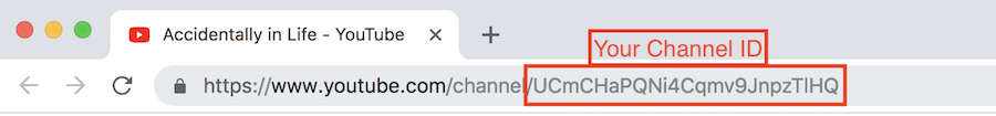 Your Channel ID on YouTube URL