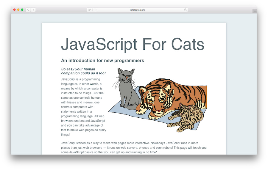 Learn JavaScript with JSforCats