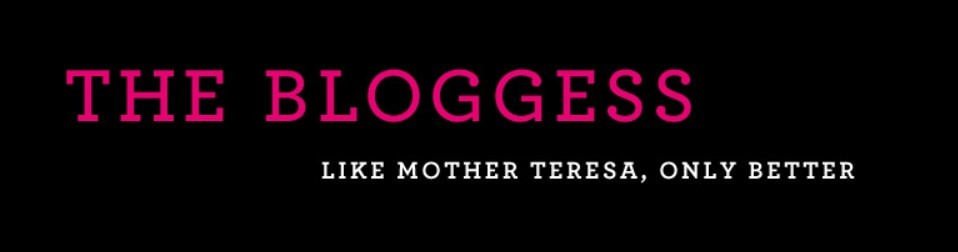 The Bloggess tagline as our example