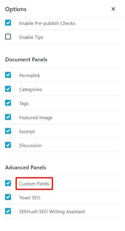 How to enable WordPress custom field