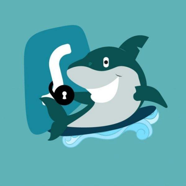 cara mencegah kebocoran dns pada ubuntu sewaktu menggunakan surfshark
